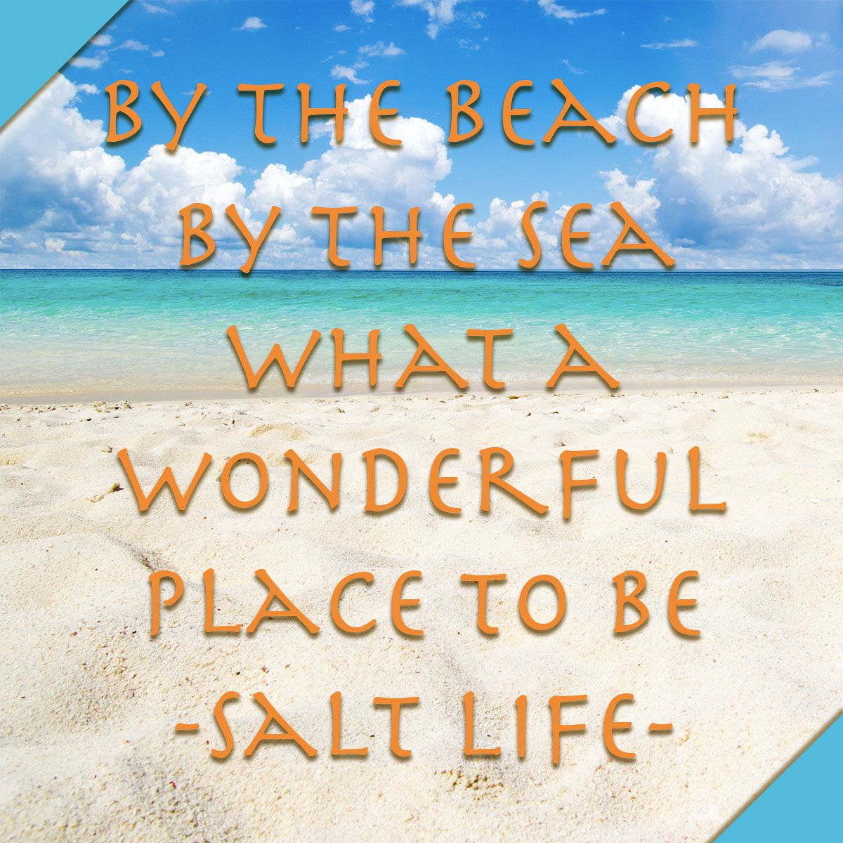 12 Salty Memes To Use You Re Feeling So Salty Beach Life Quotes Nature Lover Quotes Beach Quotes