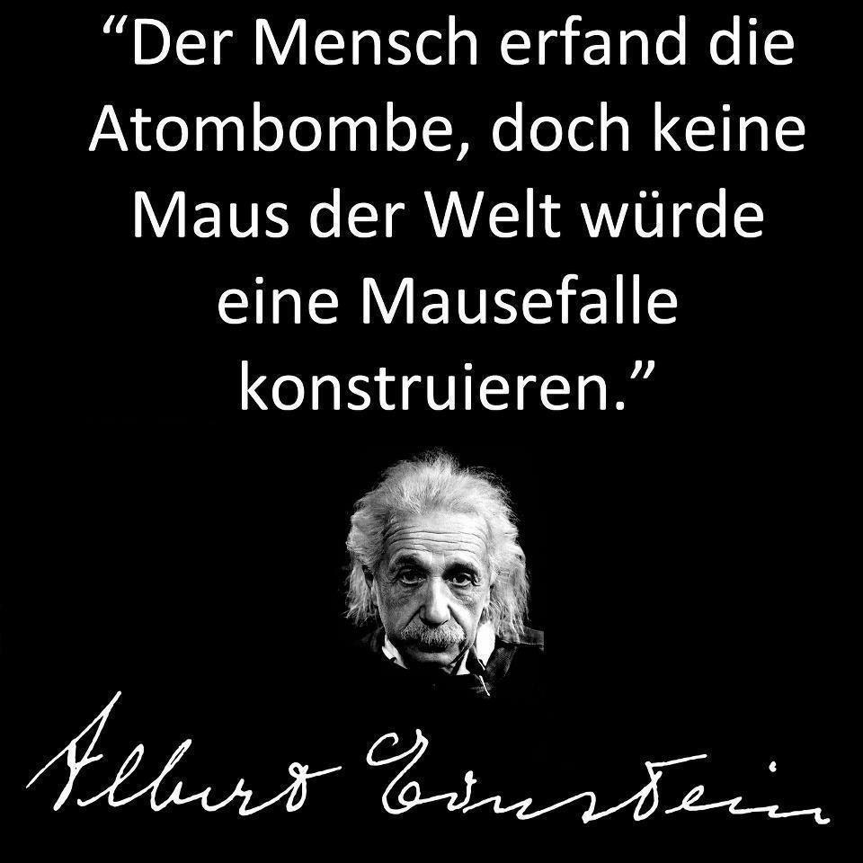 Albert Einstein Spruche Albert Einstein Zitate Weisheiten Spruche