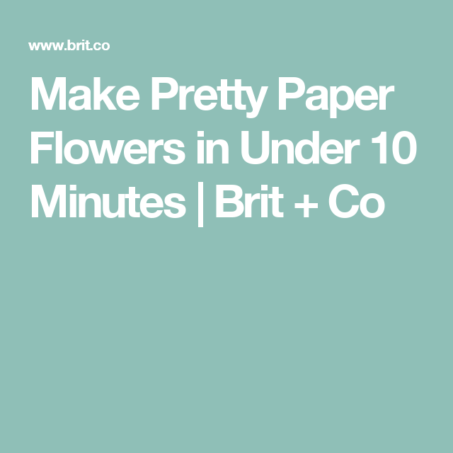 Make Pretty Paper Flowers in Under 10 Minutes | Brit + Co