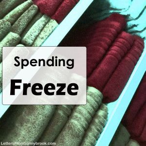 """What could be more effective to getting your budget on track than a Spending Freeze or No Spend Month? A """"Category Spending Freeze"""" can help change habits."""