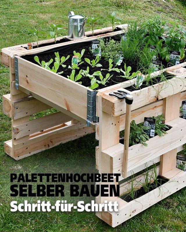 Horta e Jardim de Paletes: Aprenda Como Fazer em Casa