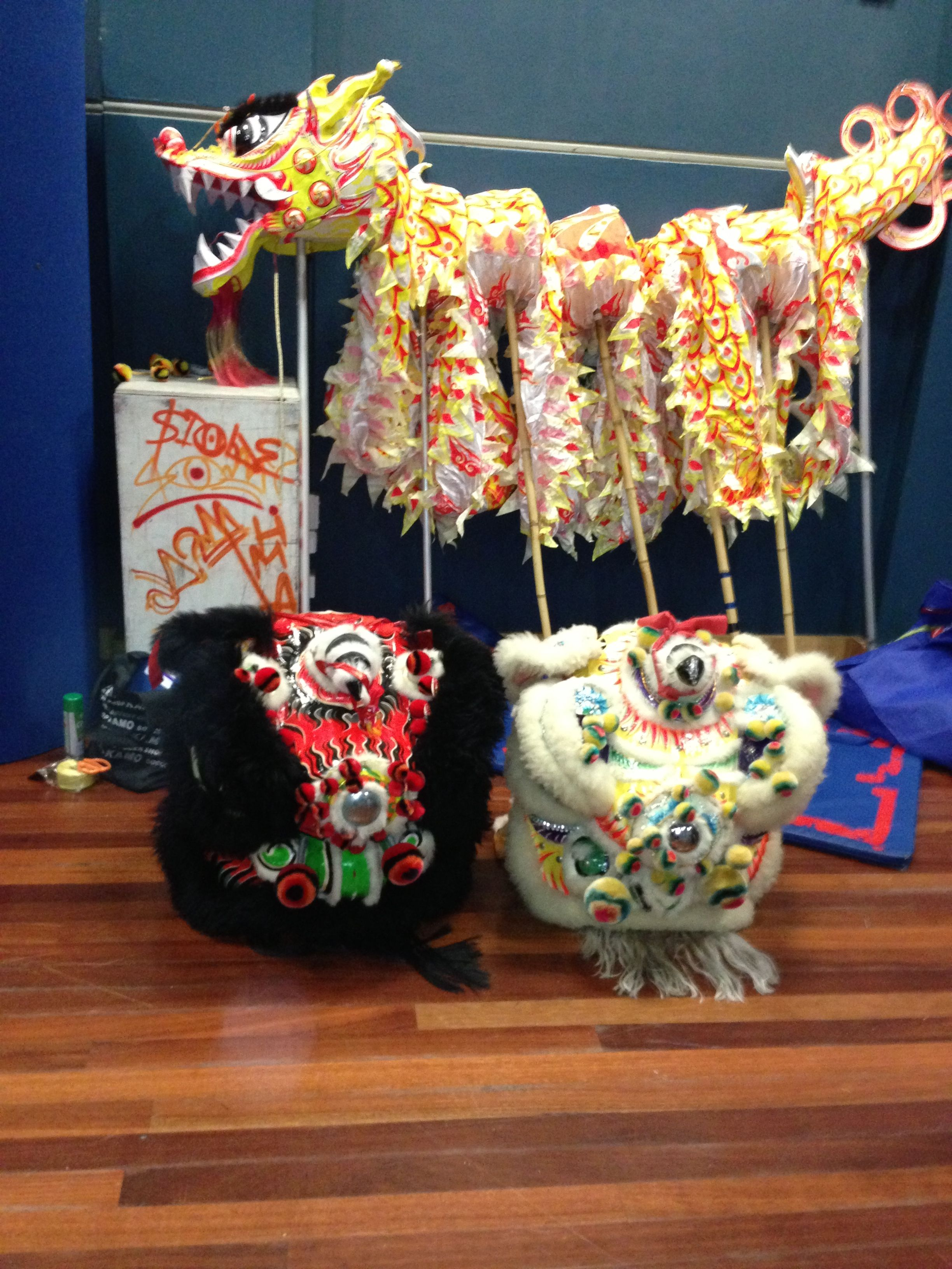 Chinese lion and dragon ready for seminar sydney