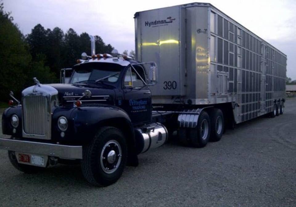 Mack Cattle Hauler Mack Trucks For Sale Mack Trucks Trucks