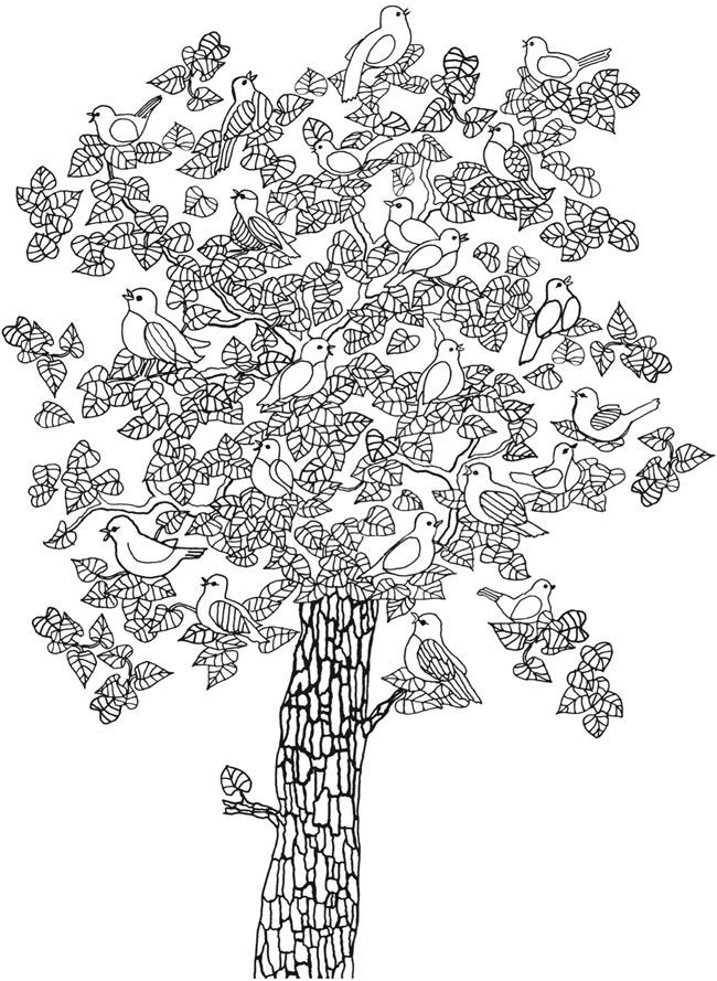 Welcome To Dover Publications Gardens Coloring Book Dover Coloring Pages Coloring Pages