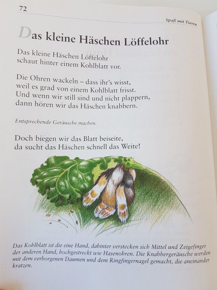 Das kleine Häschen Löffelhohr #fingerspiel #krippe #kita ...