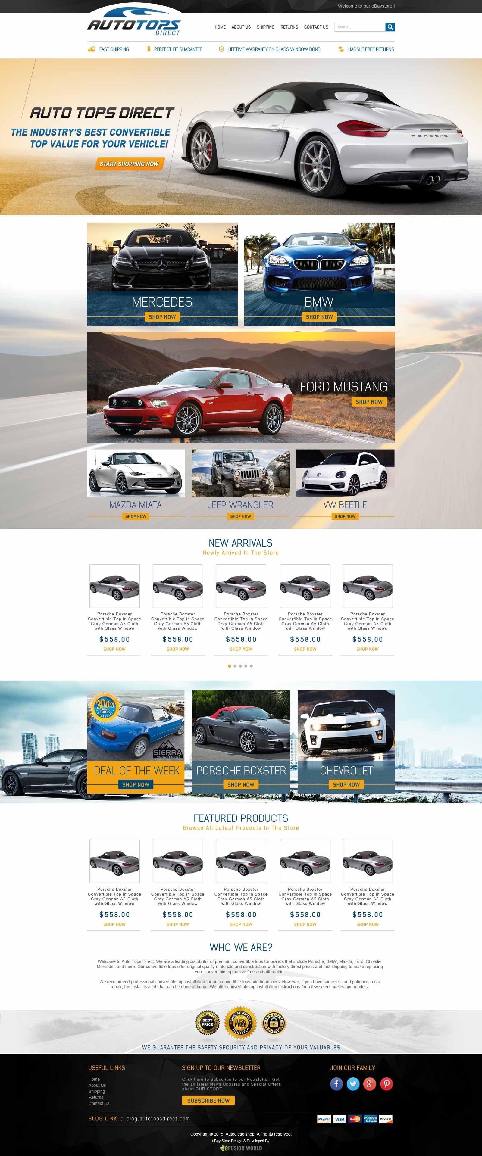 EFusionWorld Deliver Very Much Innovational And Custom EBay Store - Custom ebay store design template