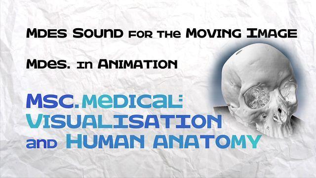 Digital Design Studio Msc In Medical Visualisation And Human