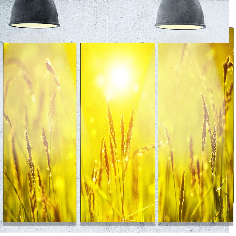 Designart \' Grass Flower at Sunset\' Landscape Glossy Metal Wall Art ...