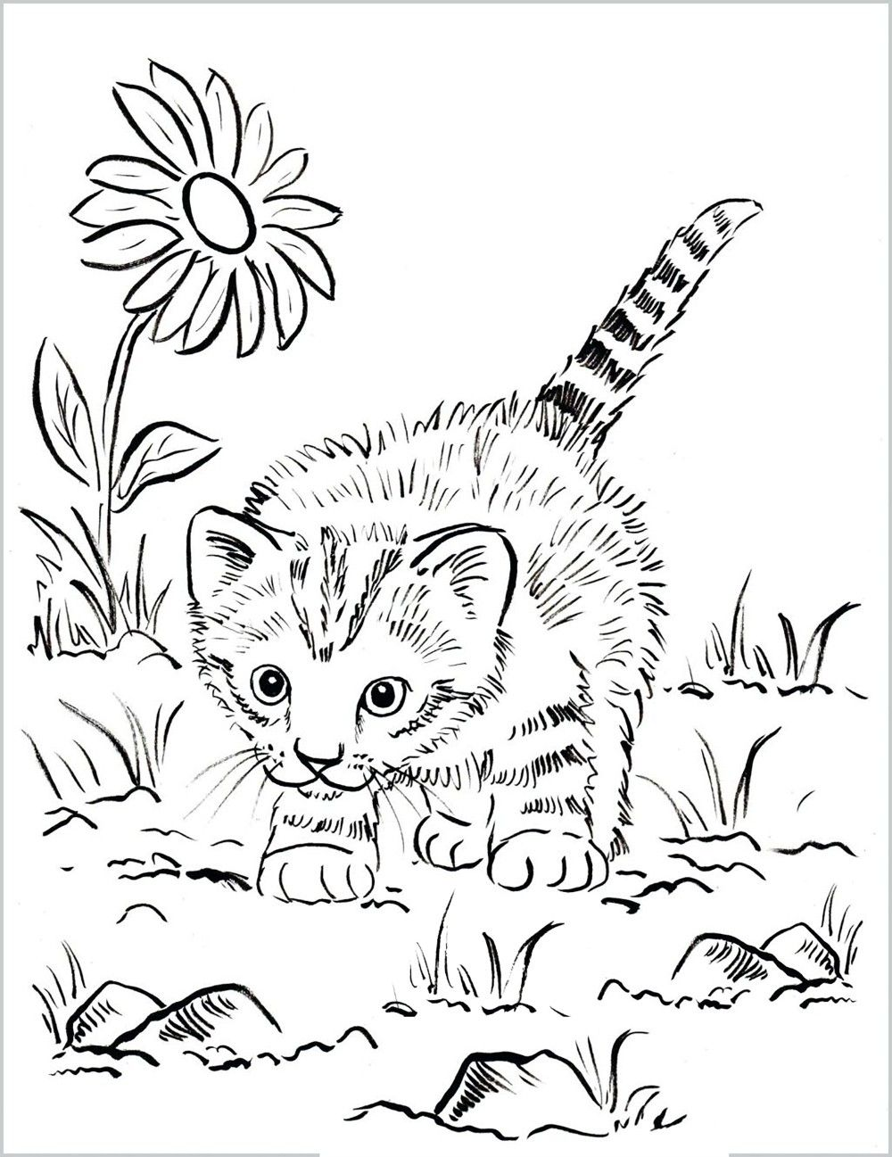 Kitty Coloring Page In 2020 Kittens Coloring Cat Coloring Page Coloring Pages