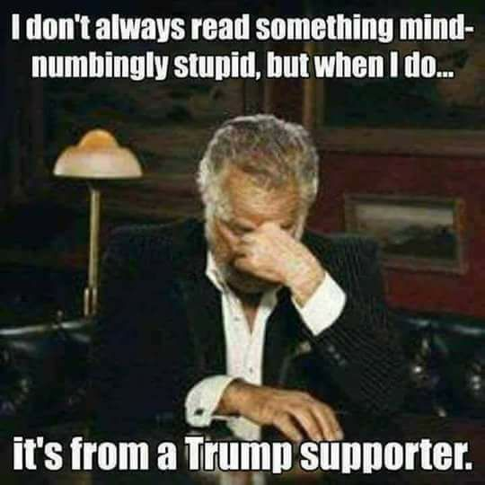 b99f62b9704ebe984aafa4f8d7e608cc i don't always read something mind numbingly stupid, but when i do