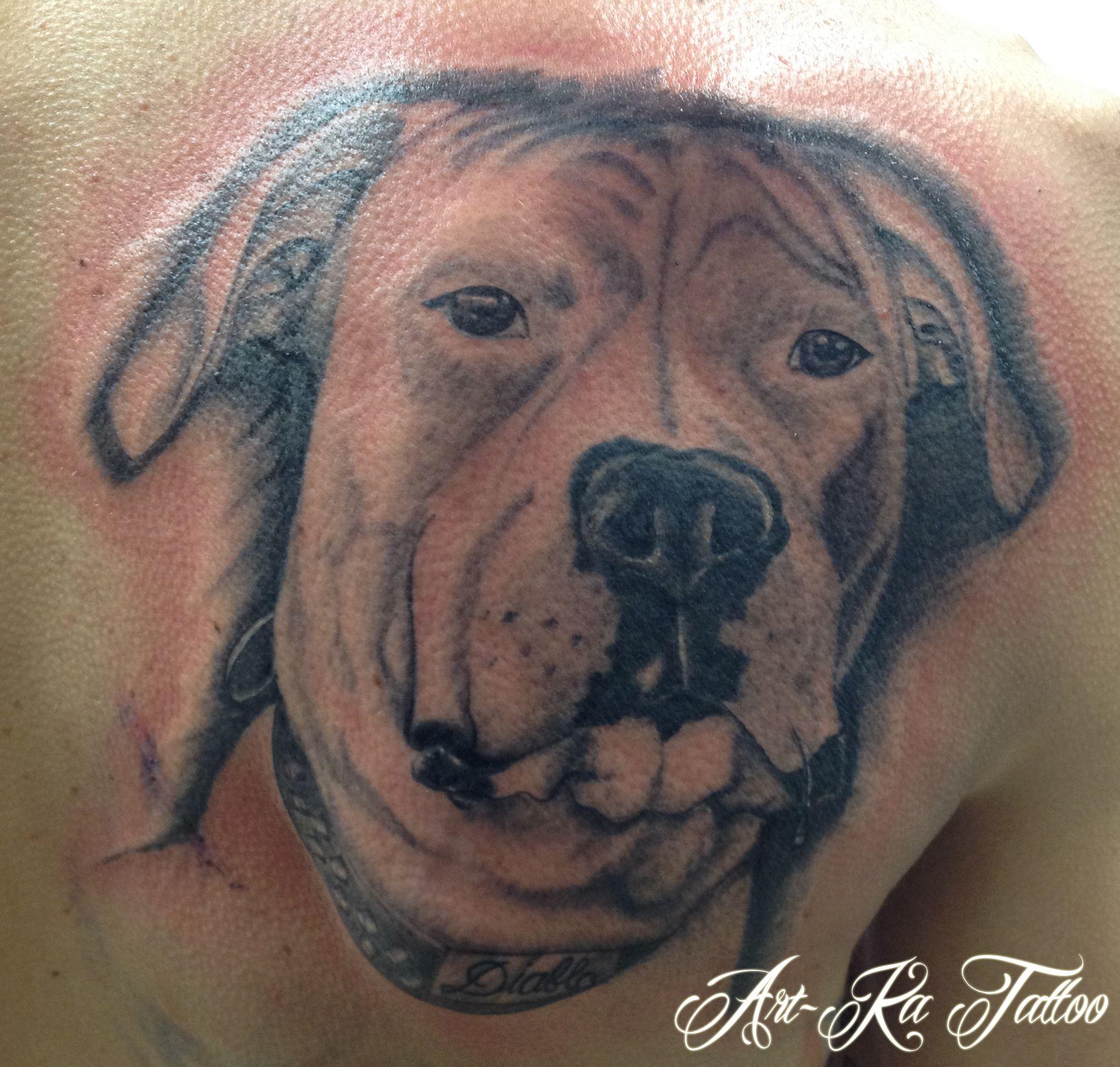Realistico Dog Tattoo Cane Tattoo Cane Tatuaggio Dogo Argentino Tattoo Tattoo Bianco E Nero Animali Tattoo Dogo Argentino Animal Tattoo Animals