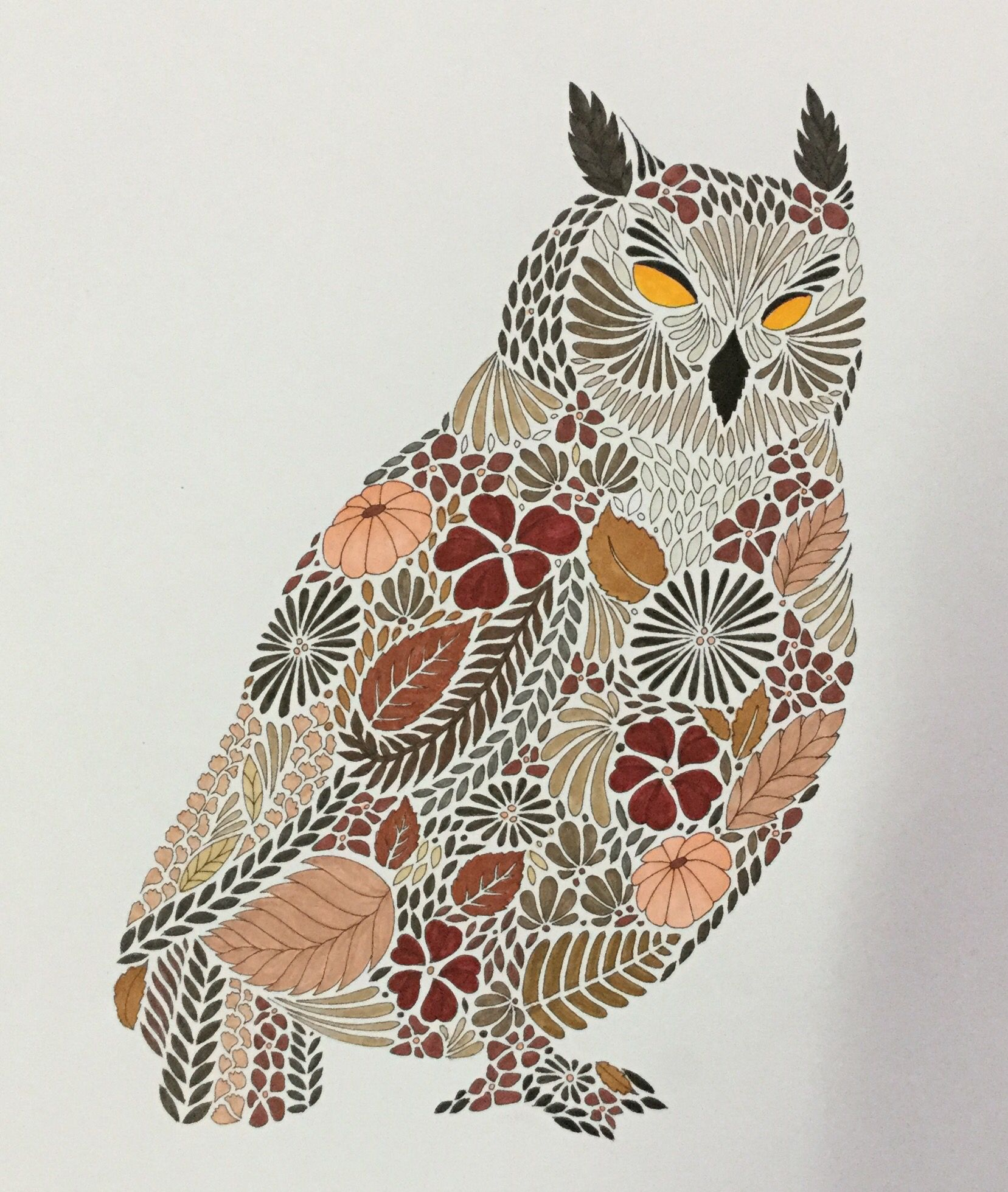 Colouring Millie Marotta Owl Hibou