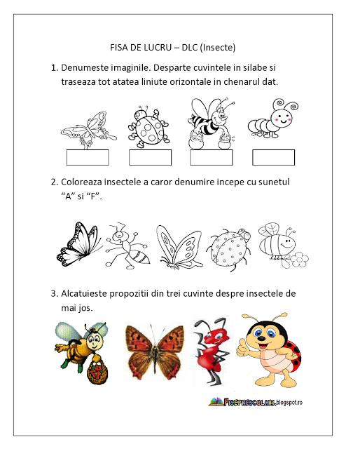 Fisa De Lucru Insecte Domeniul Limba Si Comunicare Grupa