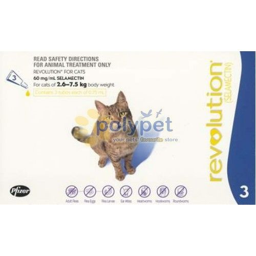 Revolution Spot On For Cats 2 6 7 5kg Blue 3pc Price Reg 52 00 Disc 40 00 Polypet Blue Cats Cats Animal Treatment