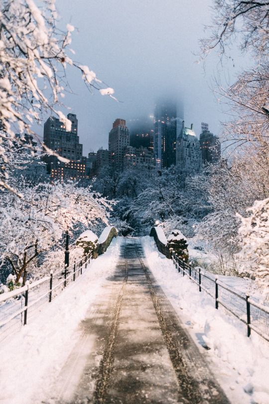 New York in Winter iPhone background