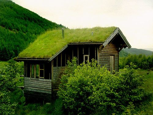 50+ Grass roof house design ideas in 2021
