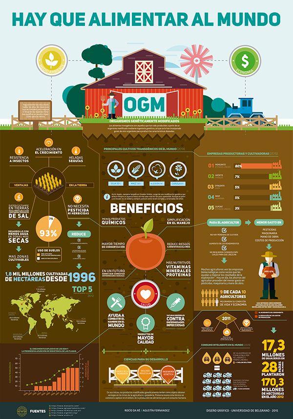 Infografia Alimentos Transgenicos Gmo Infographic Alimento Transgenico Alimentos Alimentar