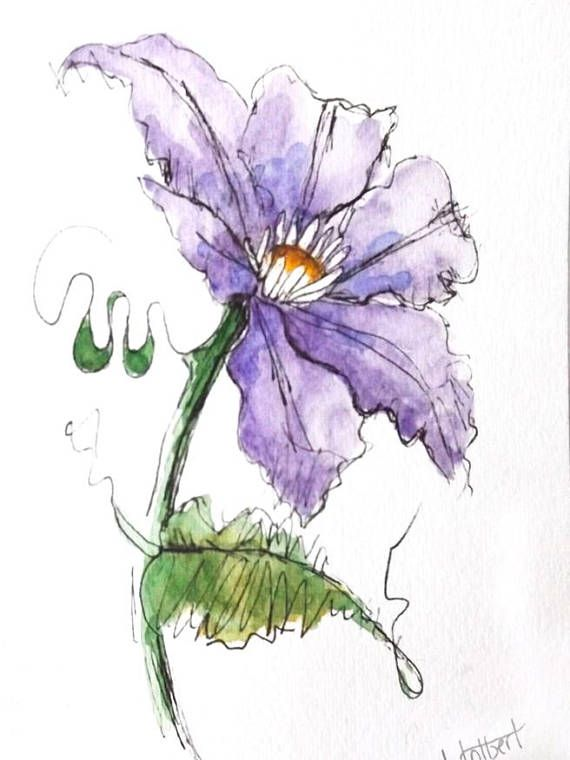 Original Artwork Of A Purple Clematis Flower Rendered In Pen Ink