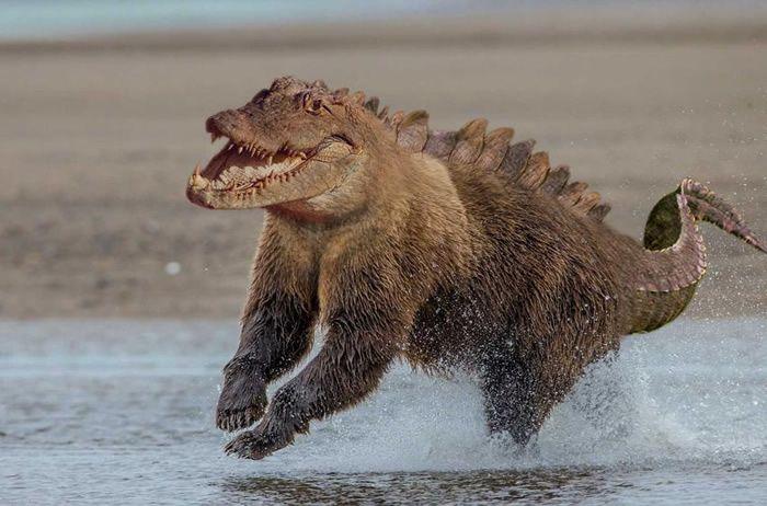 18 Misturas esquisitas, porém interessantes de animais feitas no Photoshop