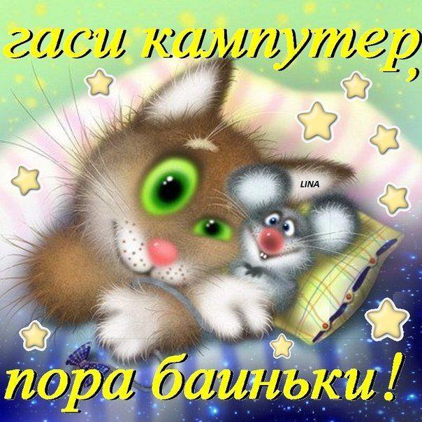 Смешное пожелания спокойной ночи фото 304-466