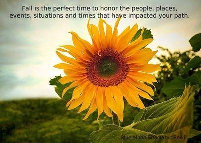 Blue Moon Shamanic Reiki   Sunflower pictures, Sunflower ...