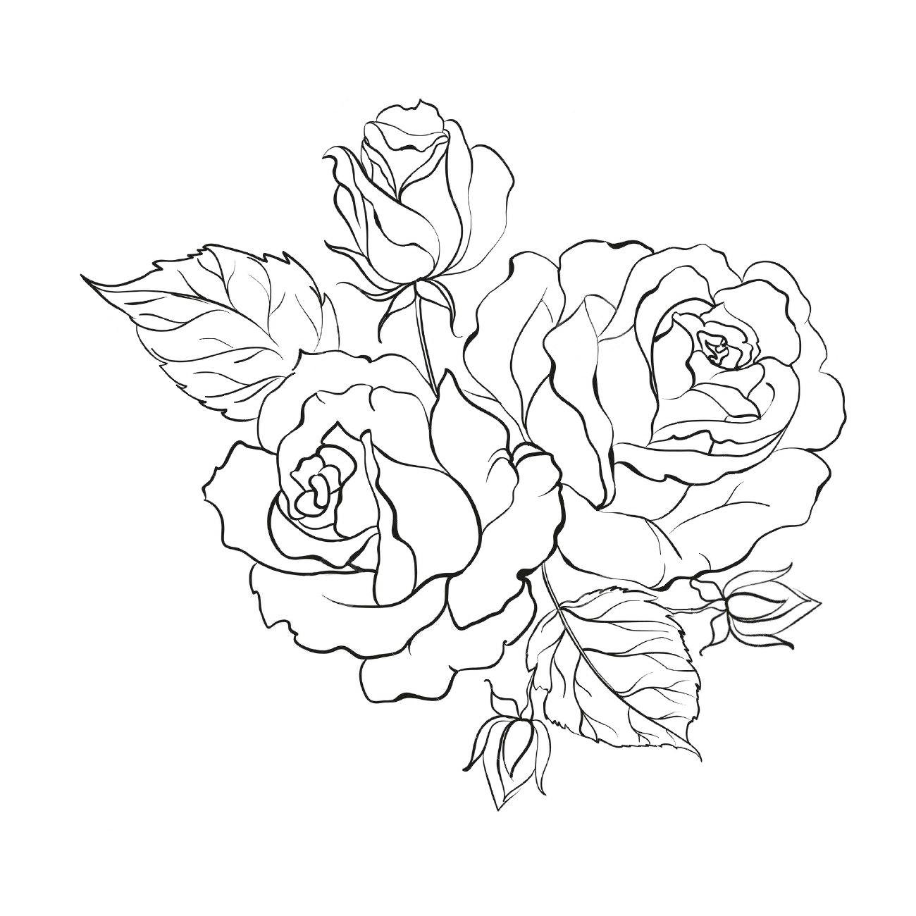 Raskraski Cvety Krasivyj Buket Roz Raskraski Rozy Kontur Rozy