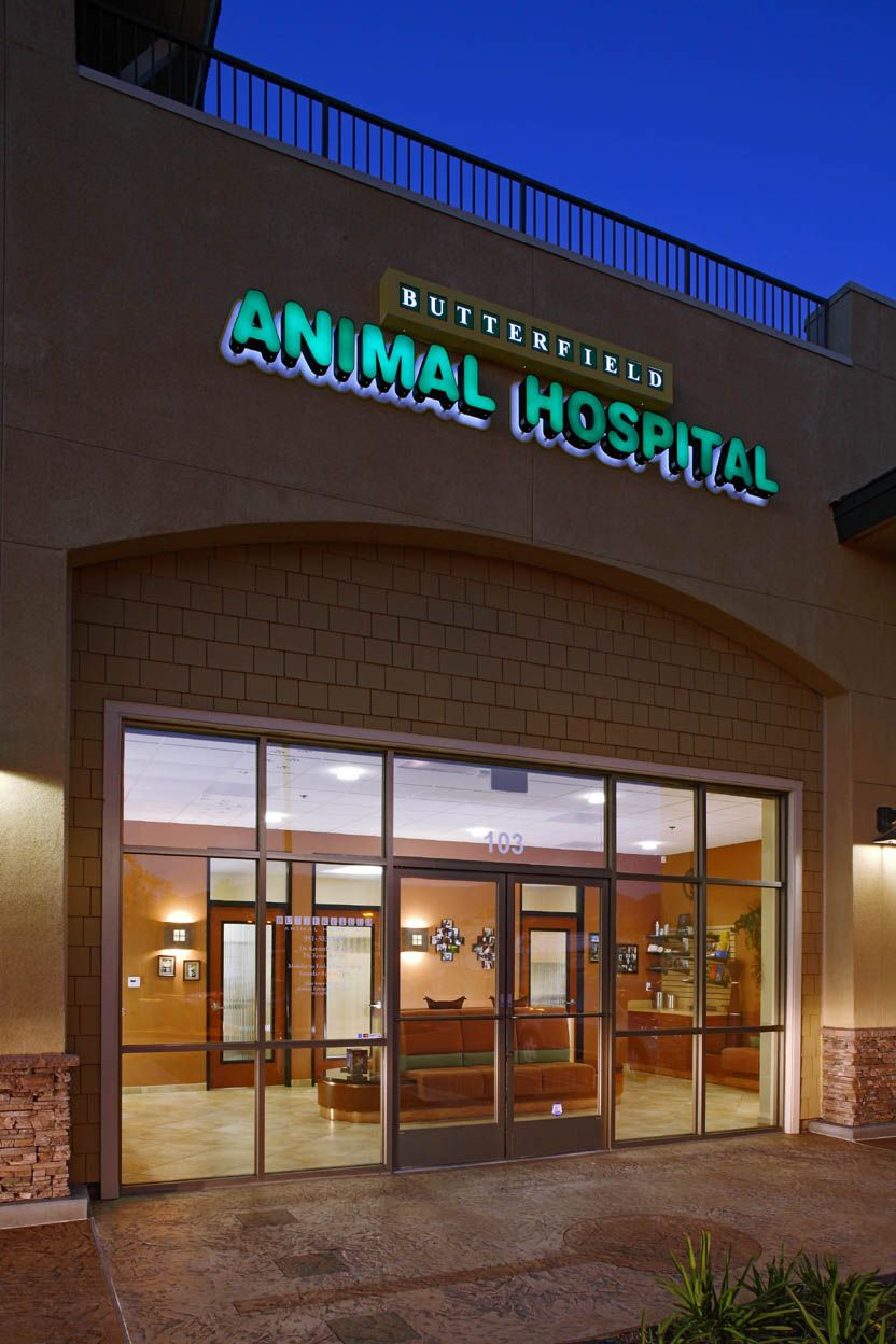 Veterinary Architects Butterfield Animal Hospital Temecula Ca