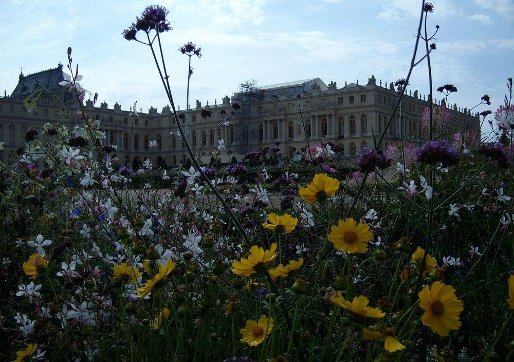 Versailles von Der große Prinz