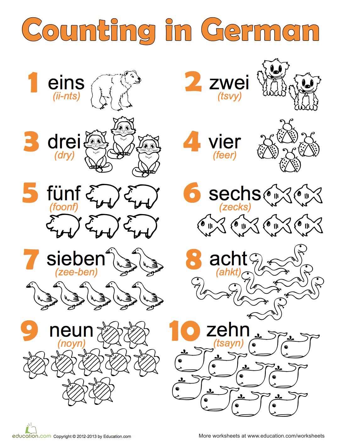 German Language Study