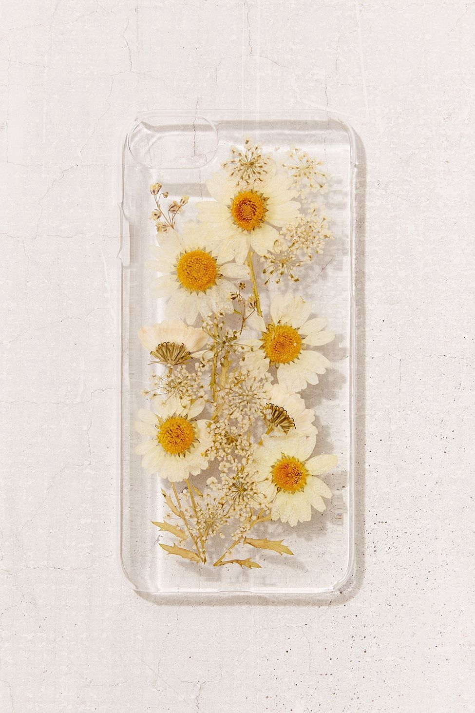 designer fashion 5e38c 47393 Urban Outfitters Oops-A-Daisy Iphone 8/7/6/6S Case - Clear One Size ...