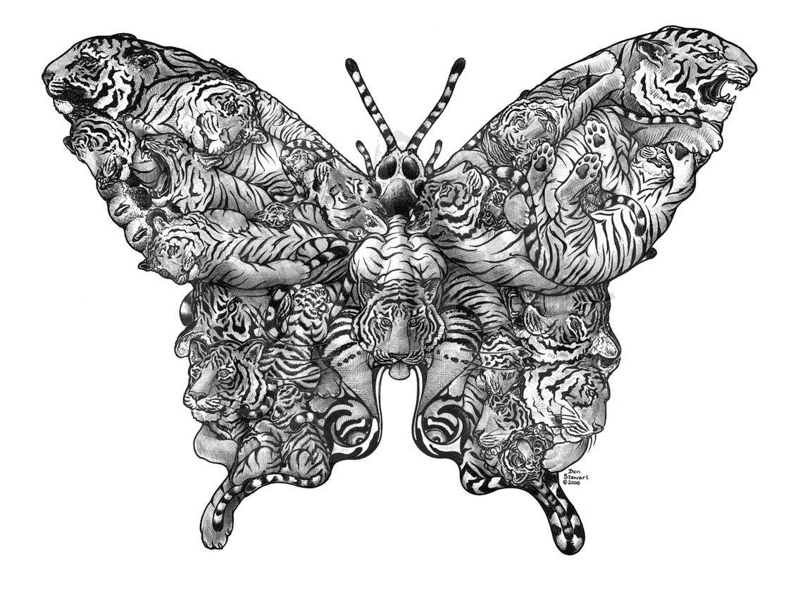 Butterfly Tiger Swallowtail DS Art Inspiring photos
