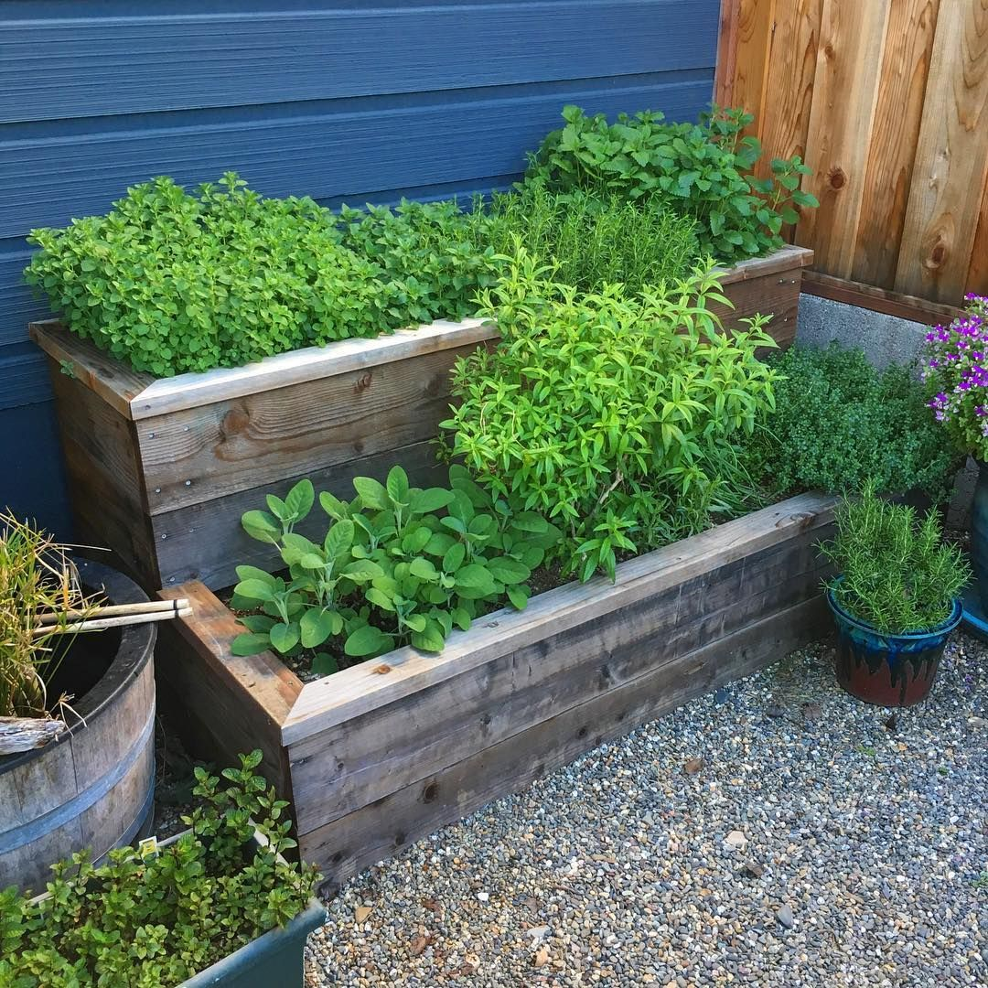 5 Easy DIY Raised Garden Bed Ideas and Plans | Garden beds ...