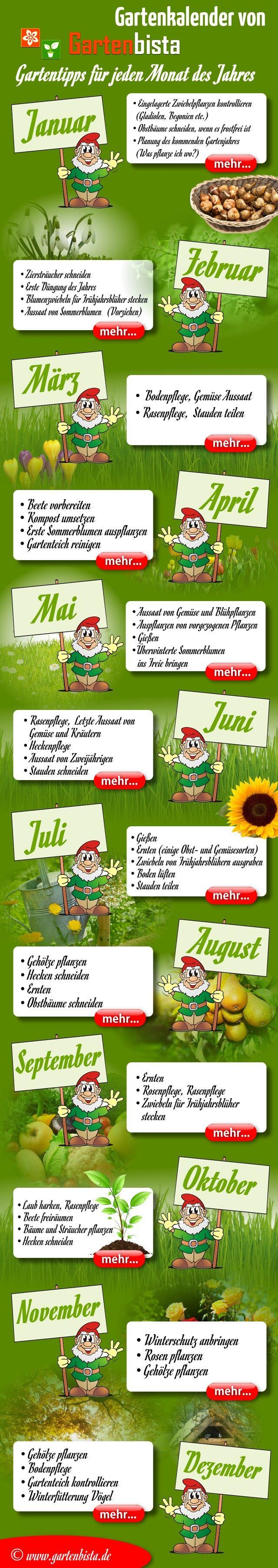 Gartenkalender | Garten, Balkon & Pflanzen | Pinterest | Garten Gemuse Pflanzen Ideen Tipps Garten