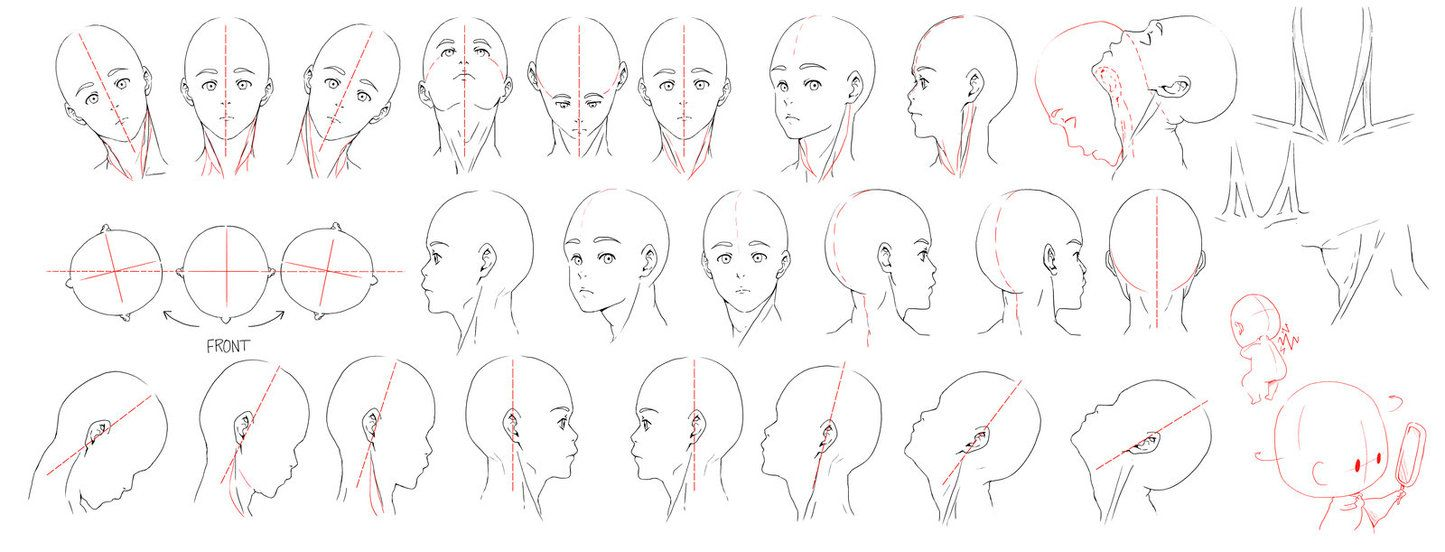 Studying Neck Anatomy Movement And Rotation For The Record I M Studying Human Anatomy Through Observing Myself Neck Drawing Drawing Tutorial Head And Neck