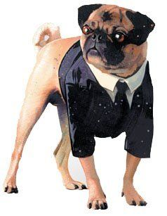 Pet Men In Black Ii Dog Costume For Medium Dogs Famous Dogs