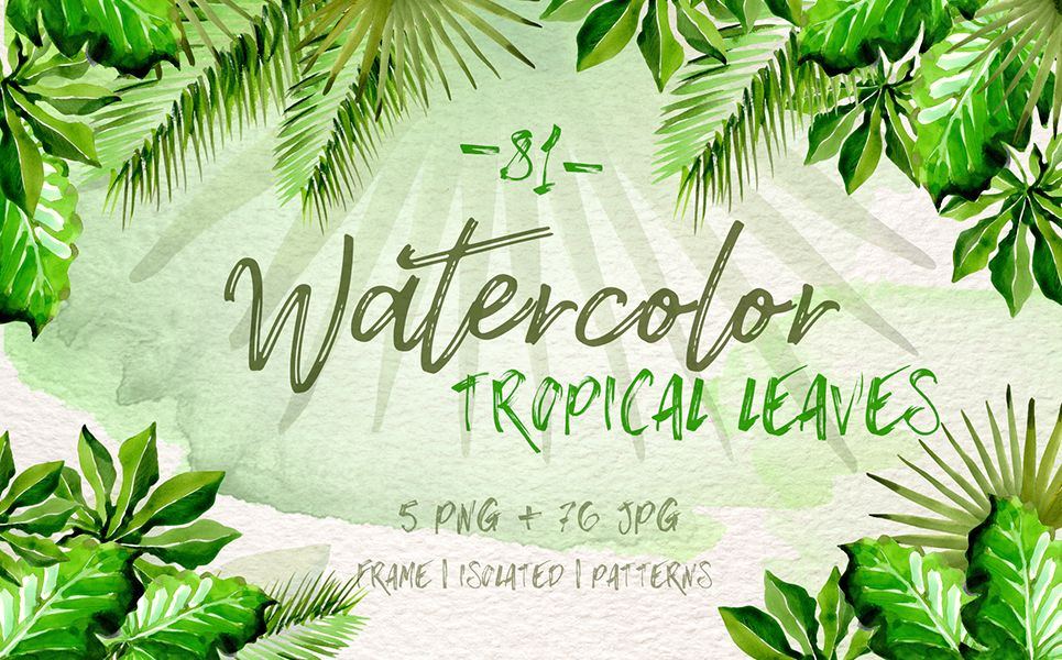 Watercolor Tropical Leaves Png Set Illustration 70949 Tropical