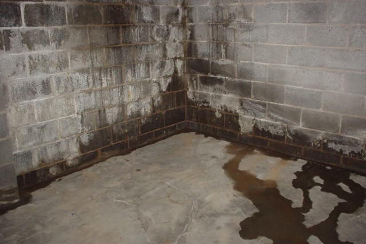 Waterproofing Basement Walls Costs And Options Waterproofing