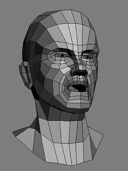 Topology Head... By Wouter_vugt