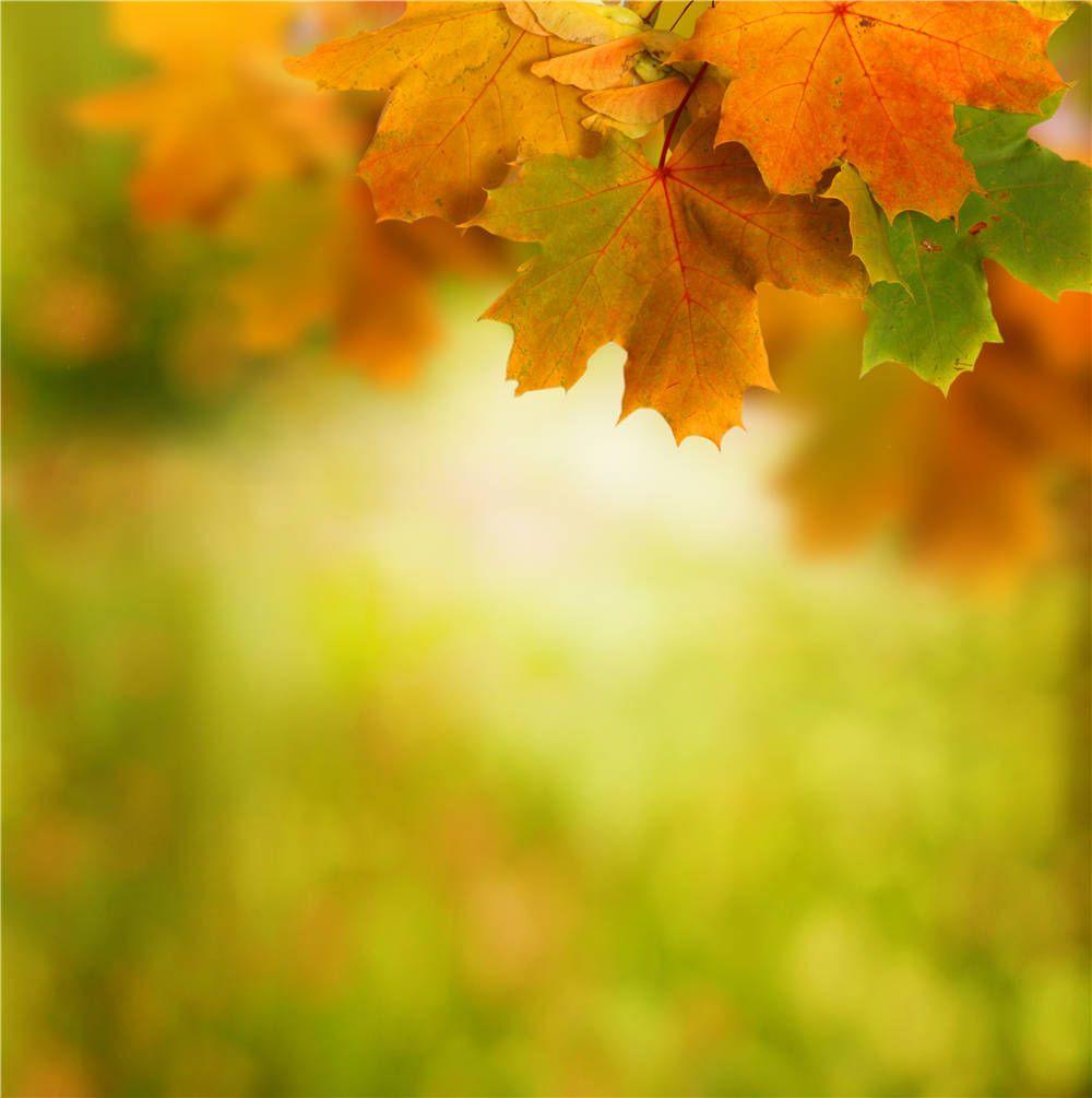 Картинки надписями, анимация осенние листья