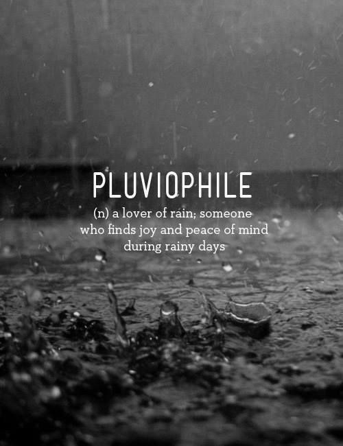 Pluviophile A Lover Of Rain Wonderful Words Cool Words Words