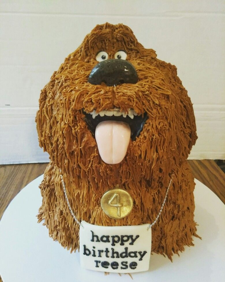 Secret Life Of Pets Duke Cake Www Facebook Com Nikkiscreativeconfections Movie Birthday Party Childrens Birthday Cakes Baby Birthday Party