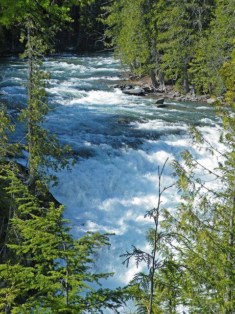 McDonald Creek 5-13-12 by glaciernps, via Flickr