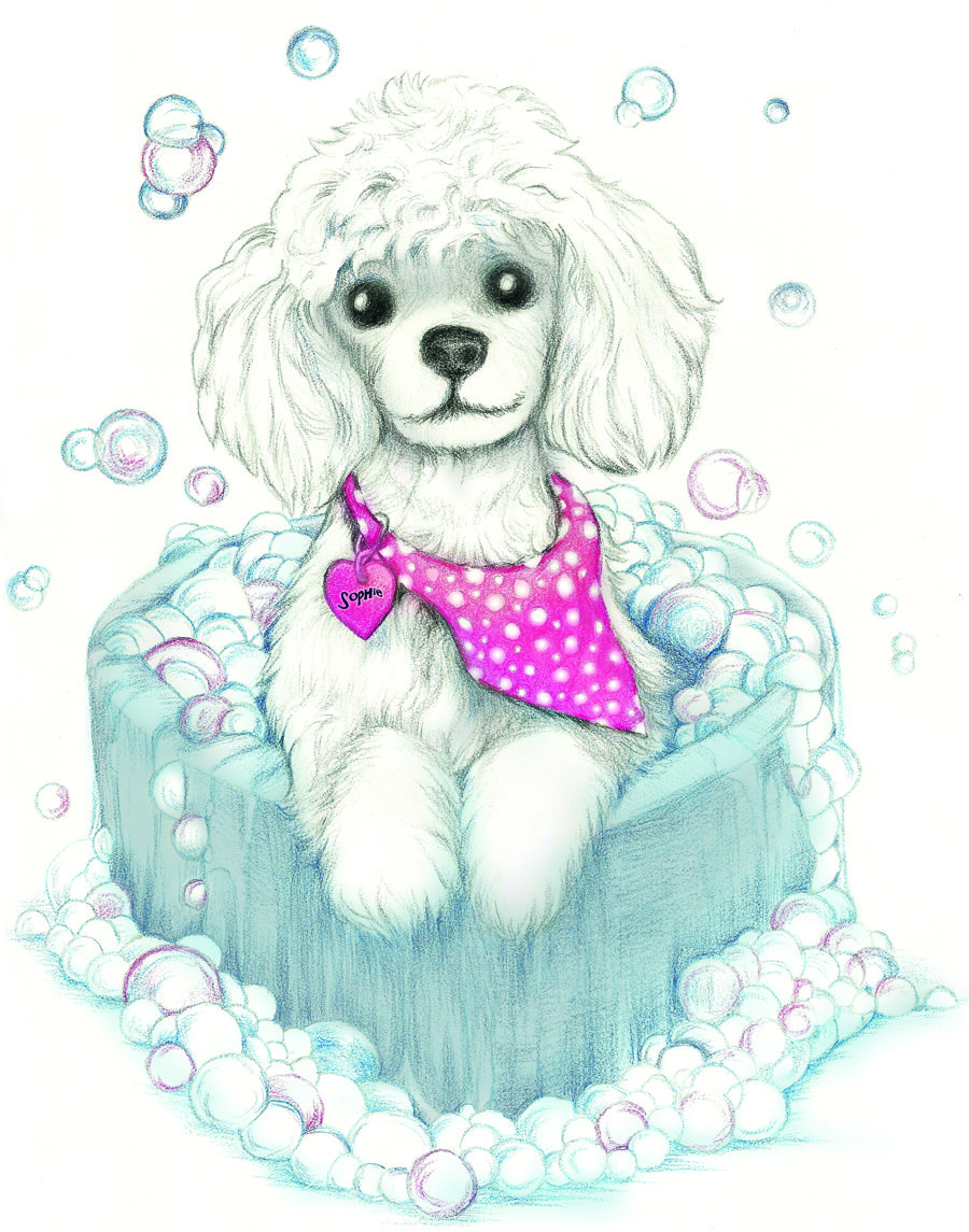 My Sophie As A Cartoon Poodle Poodle Drawing Cartoon Dog Dog