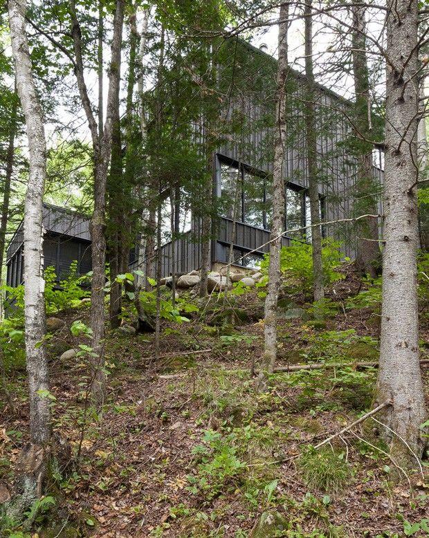 La cache maison en pleine for t par nathalie thibodeau for Maison archi foret