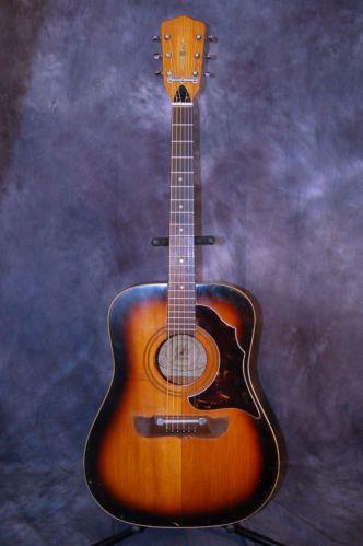 Vintage Rare 60s Framus Country Western Acoustic Guitar Pro Setup Original Case Guitar Acoustic Guitar Acoustic