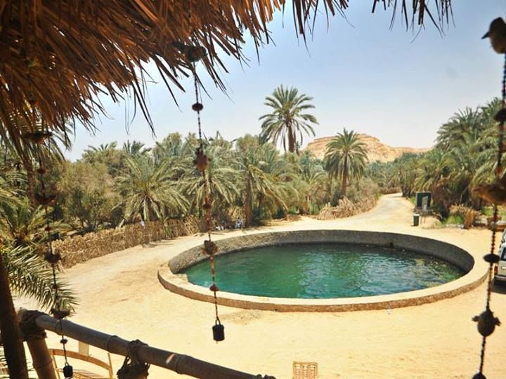 Cleopatra S Pool Siwa Oasis Western Desert Egypt With Images