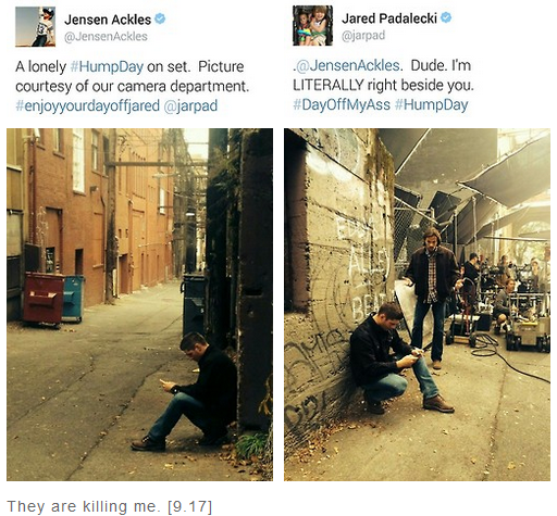 Jensen's Lonely Humpday Tweet And Jared's Response