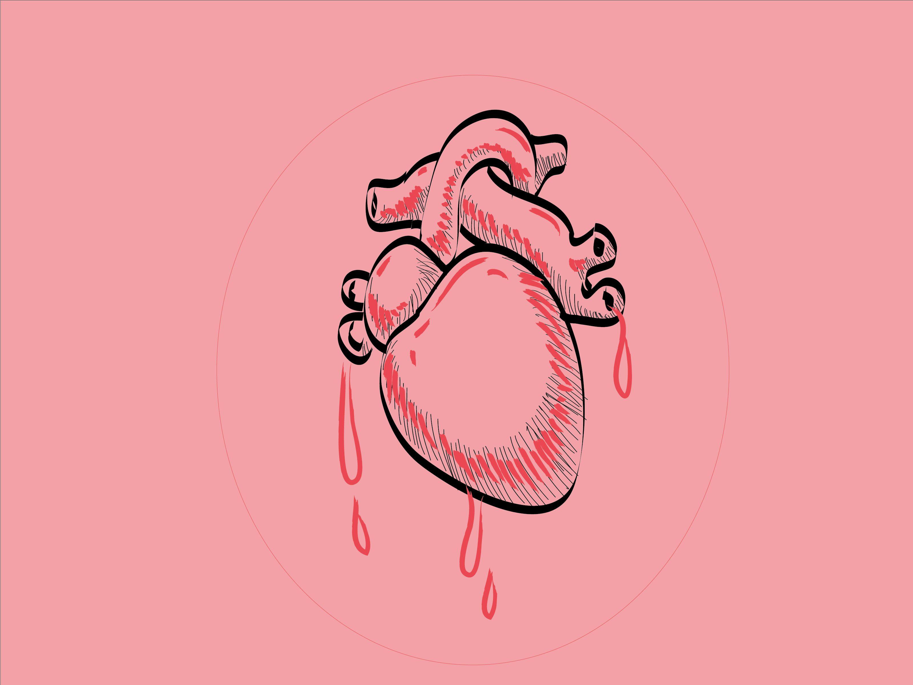 How To Draw A Human Heart Cartoon Heart Human Heart Heart Sketch
