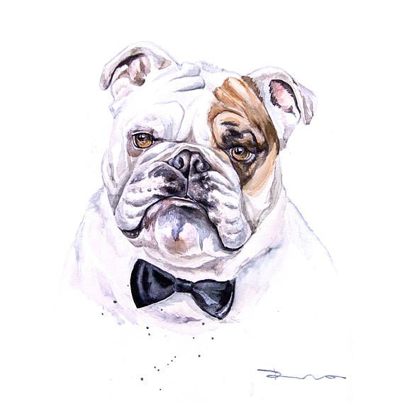 Bulldog Pet Portrait Custom Portrait Dog Animal Custom Pet - Game of thrones pet paintings