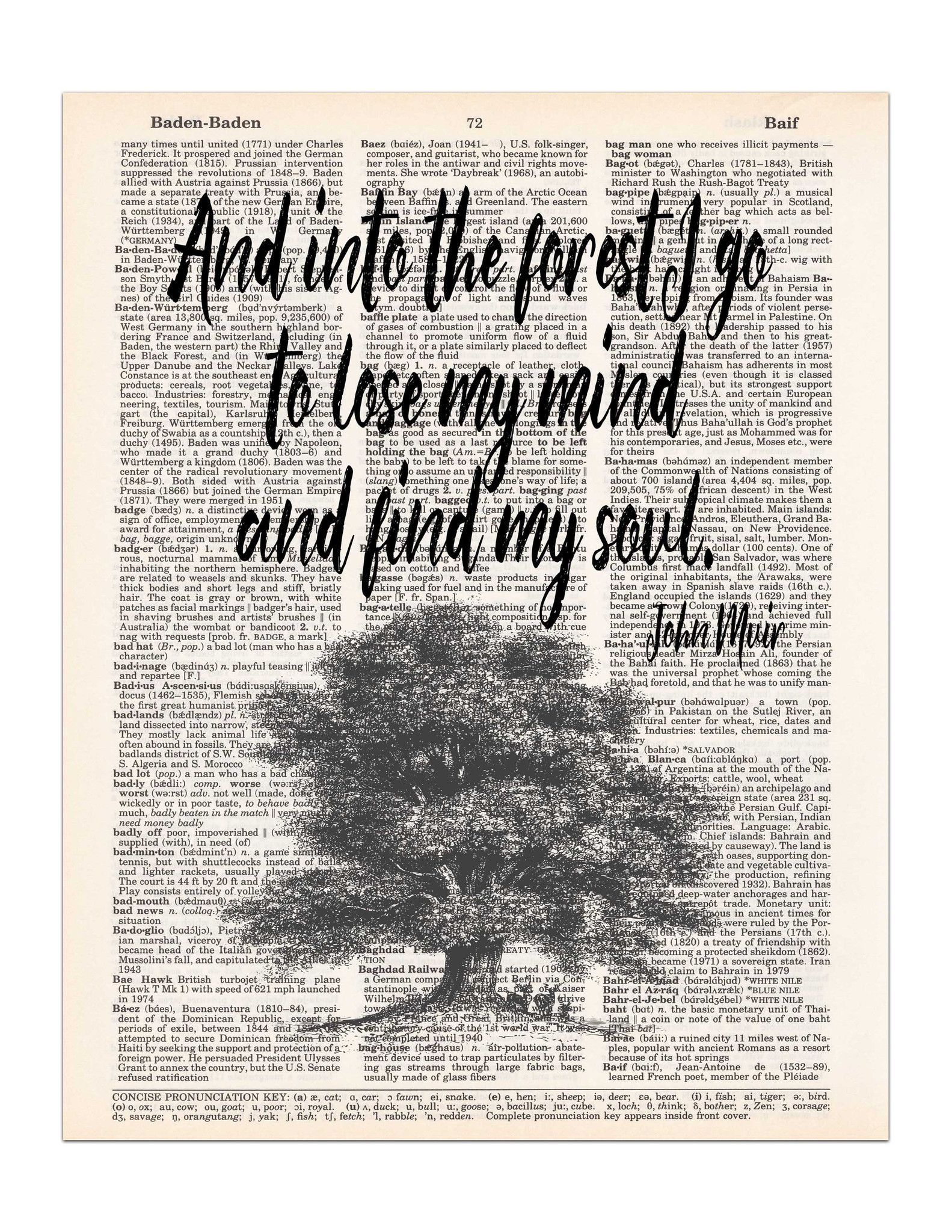 Into The Forest John Muir Nature Quote Dictionary Page Art Print 8x11 Unframed